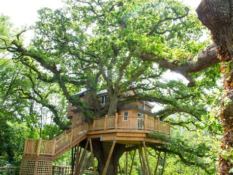 treehouse wedding venue west uk room types fox and hounds hotel weddings