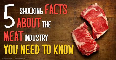 5 Most Shocking Controversies In The Food Industry - shocking facts about the meat industry