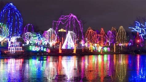 cleveland lights at the zoo cleveland zoo lights decoratingspecial com