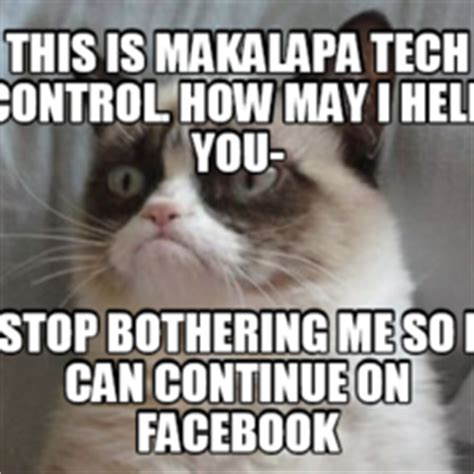 How Can I Stop Cat From Shedding So Much by Grumpy Cat Hilarious Cat Pictures With Captions