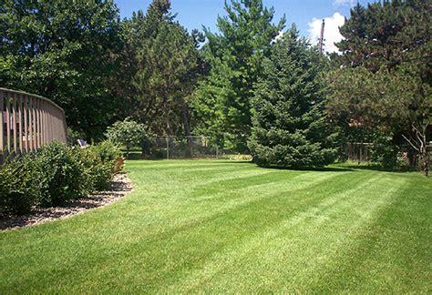 lawn care rockford lawn mowing rockford rockford lawn
