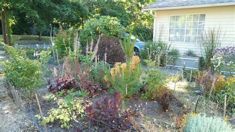 how much to landscape backyard 100 how much to landscape a backyard best 25 square