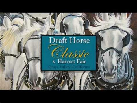 2013 Draft Horse Classic Nevada County Fairgrounds Classic Grass Valley Ca