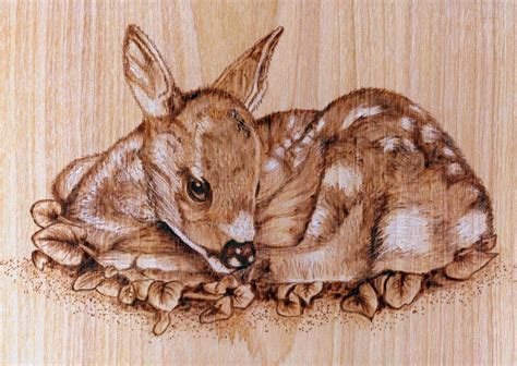 woodworking for wildlife wildlife pyrography patterns car interior design