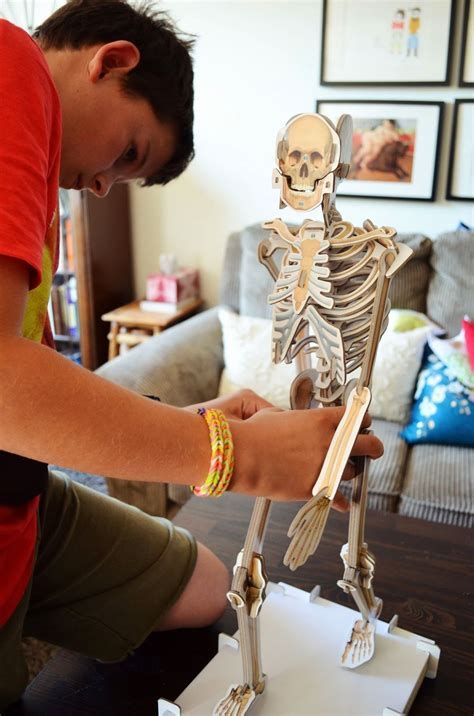 smithsonian    skeleton kit fun  kids