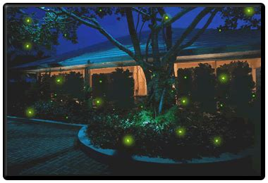 solar firefly lights garden solar lights bugs garden free engine image for