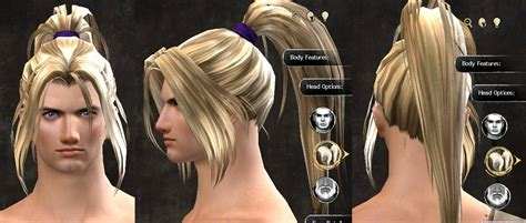 gw2 human hairstyles gw2 new hairstyles in wintersday patch dulfy