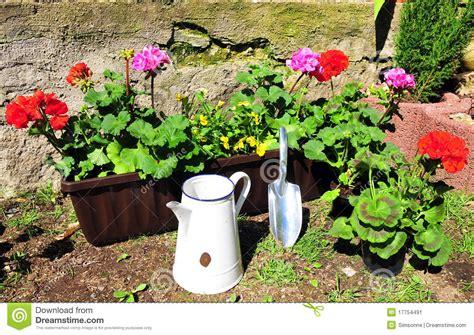 flower box garden flower box garden container gardening ideas protecting