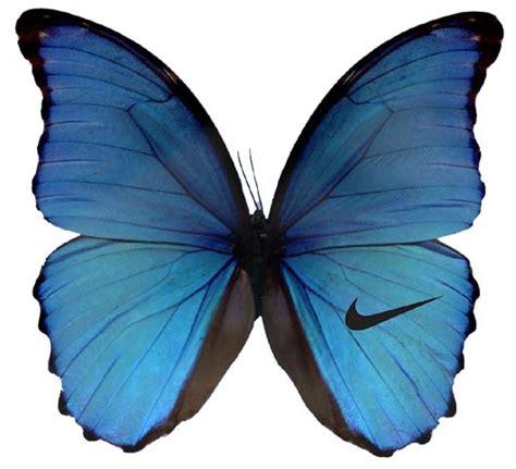 Butterfly Wings designs butterfly wings