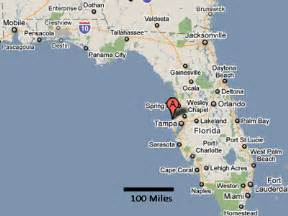 Palm Harbor Florida Map by Sighting Reports 2011