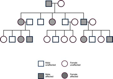 inheritance pattern pedigree quiz solved 8 what is most likely the pattern of inheritance