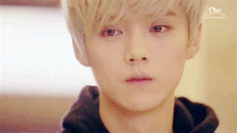 film drama luhan exo exo wolf gif find share on giphy