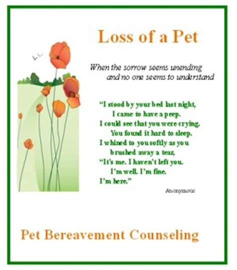 loss of pet words of comfort grief quotes loss of pet quotesgram