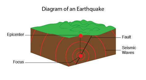 earthquakes diagram the gallery for gt earthquake diagram worksheet