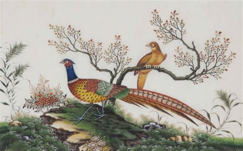 set   chinese rice paper paintings  birds