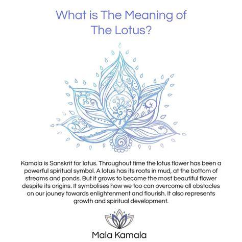 lotus mandala tattoo meaning de 25 b 228 sta id 233 erna om aum bara p 229