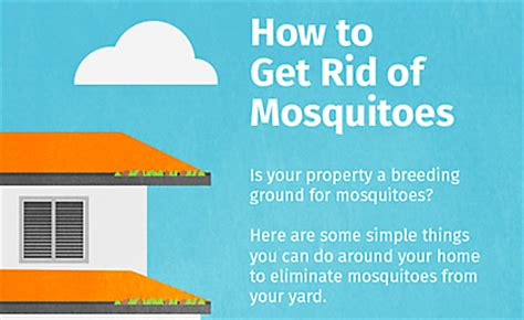 how to get rid of mosquitoes mosquito magnet 174