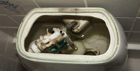 binnenwerk stortbak toilet vervangen binnenwerk wc vervangen repareren werkspot