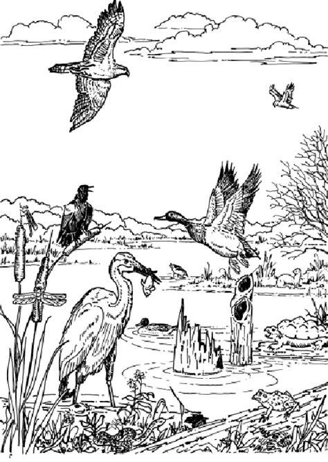 wildlife coloring pages wildlife coloring pages bestofcoloring