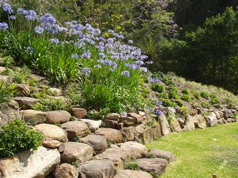 backyard rock wall landscaping rock landscaping