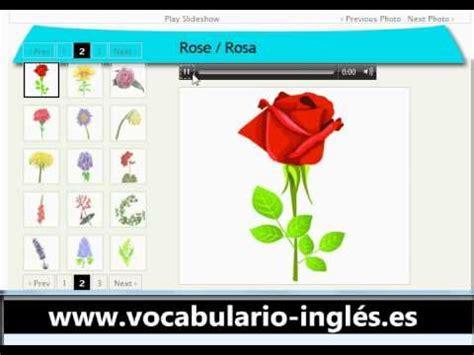 imagenes en ingles de flores vocabulario de ingles las flores http www facile