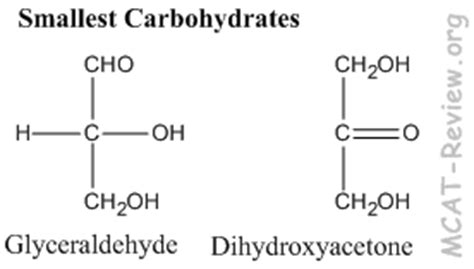carbohydrates mcat carbohydrates biology www pixshark images