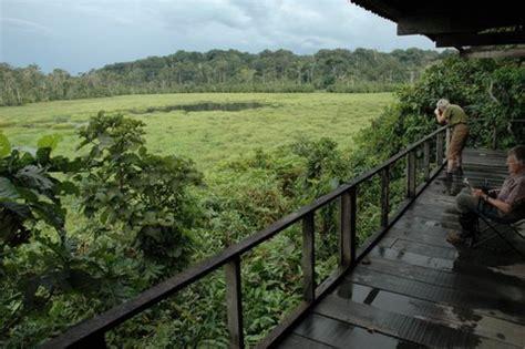 short description about jatim park nouabal 233 ndoki park 10 days sangha congo gopackup
