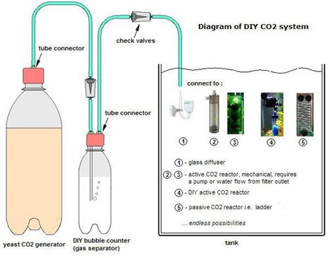 diy co2 recipe the agile aquarist
