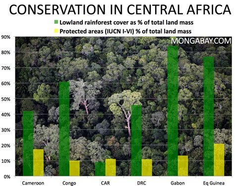 Animals And Plants In Tropical Rainforest - congo conservation