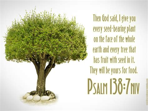 tree in bible psalm 138 7 tree of wallpaper christian