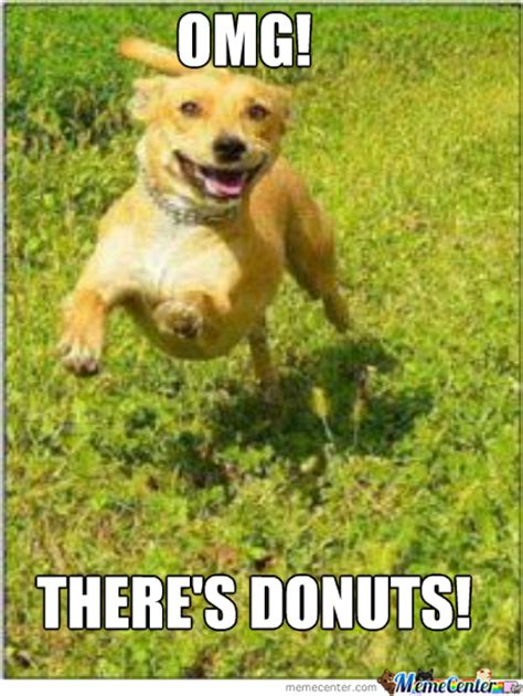 Funny Donut Meme - dog s and donuts by dontscam meme center
