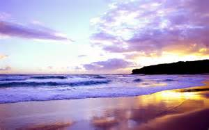 Beach purple sunset wallpapers pictures photos images
