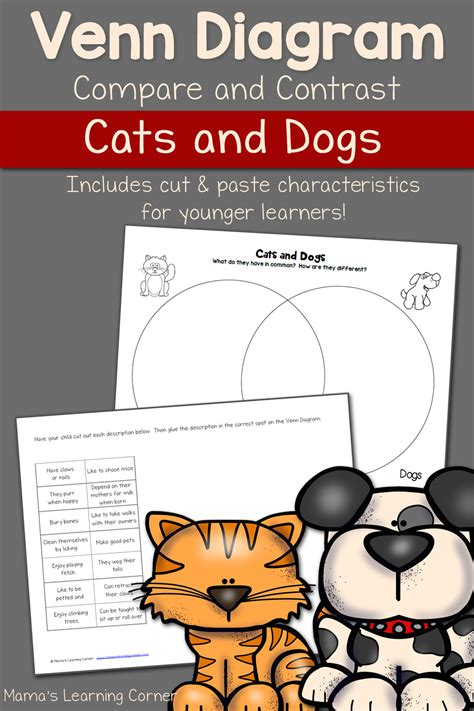 compare and contrast cats and dogs venn diagram cats and dogs venn diagram worksheet mamas learning corner