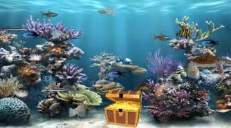 Clear Aquarium Animated Wallpaper   DesktopAnimated.com