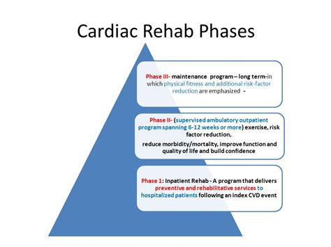 Detox Stabile After Treament Phase by Cardiac Rehab Physical Therapy About Physical Therapy