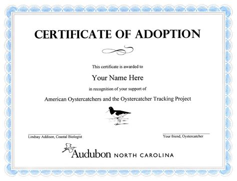 pet adoption certificate template crafts birth certificates