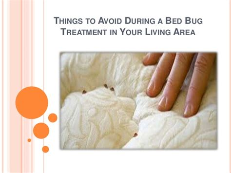 Things To Do With Your In Bed by Things To Avoid During A Bed Bug Treatment In Your Living Area