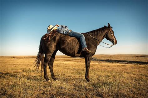 Horse Outside agriculture photography by todd klassy cowgirls photos