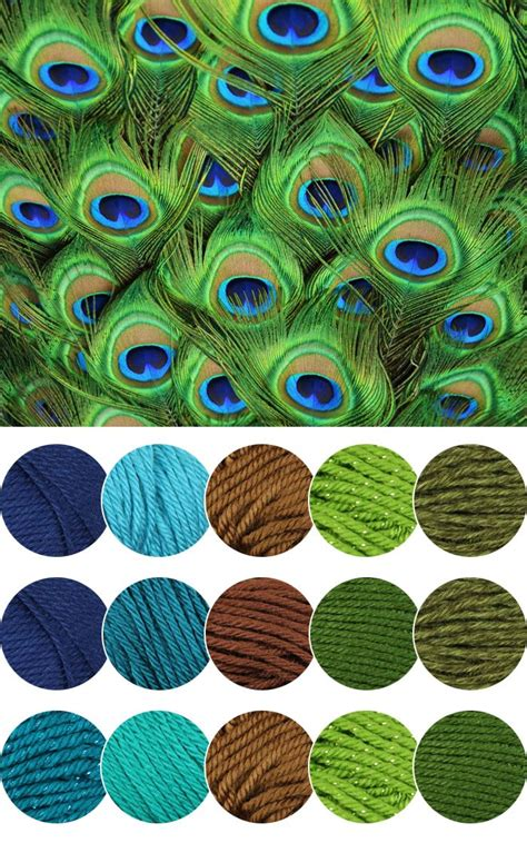 peacock colors peacock color inspiration yarn colour