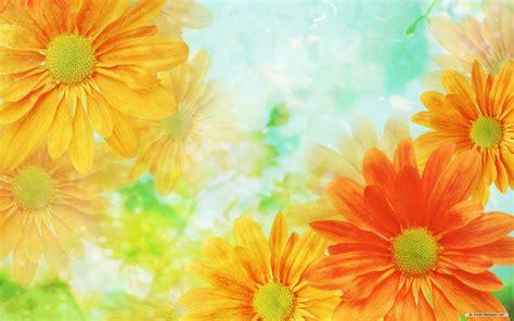 wallpaper flower art flower background wallpaper 1920x1200 22863