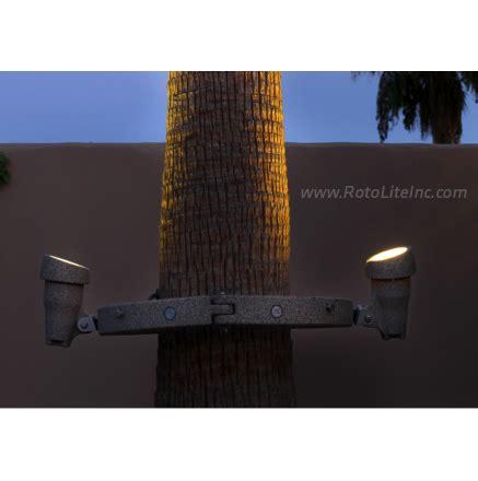 palm tree lighting ring palm tree ring light roto lite inc led landscape lighting