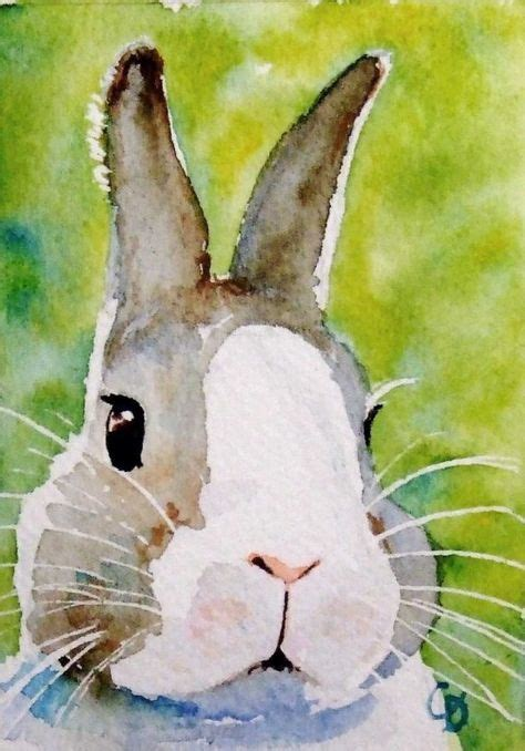 watercolor rabbit tutorial painting on pinterest picasa music wall and china painting