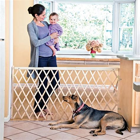 evenflo wide spaces swing gate evenflo expansion swing wide gate