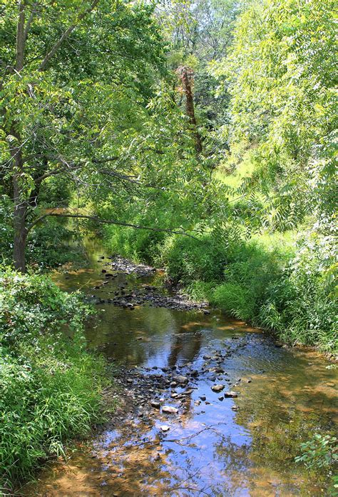 plum creek shamokin creek