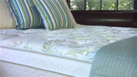 jamison bedding english garden collection by jamison bedding i the