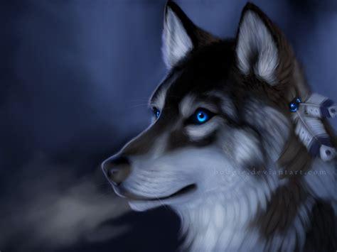 imagenes de lobos taringa animales majestuosos el lobo