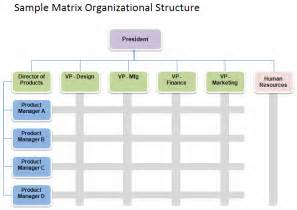 business structure chart template international business organizational chart international
