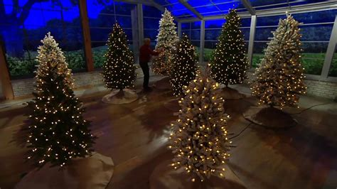 b and q best christmas trees santa s best balsam fir tree with rgb 2 0 technology on qvc
