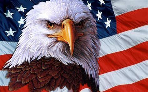 American Bald Eagle Wallpaper 183 American Wallpaper