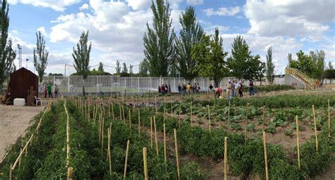 horticultura urbana huerto balcon el ayuntamiento de madrid habilita 27 nuevas parcelas para